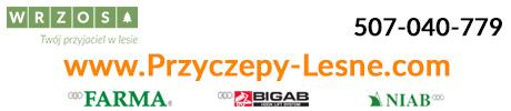 Przyczepy-lesne.com